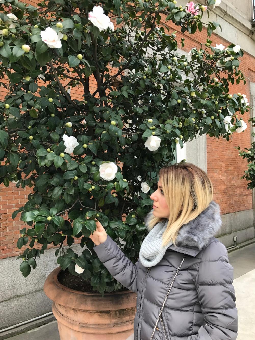 Deliria Rose Madrid 5