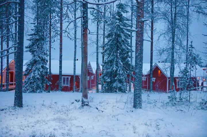 Finlandia_Helsinki y Laponia6