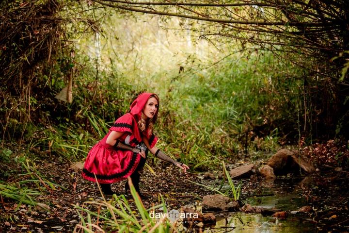 caperucita roja - deliria rose14