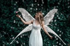 Fantasy_art_white_fairy2